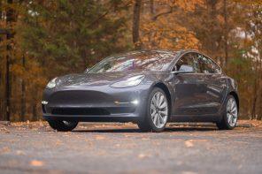 Tesla holder ude i en skov med tændte lygter